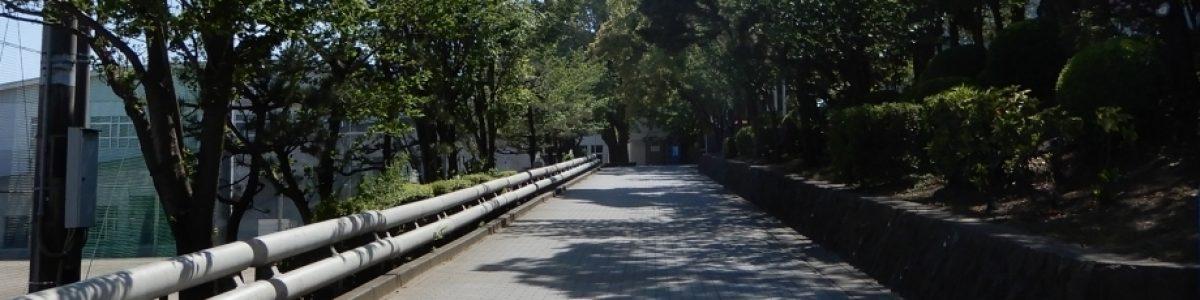 湘南の坂道